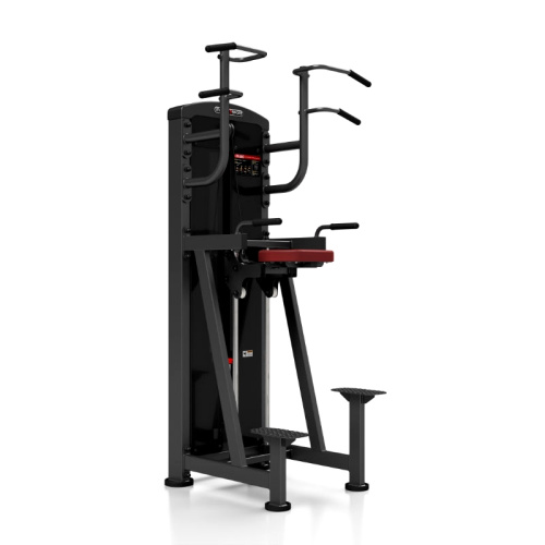 assisteret pull up bar dip station